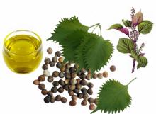 perilla-seed-oil.jpg